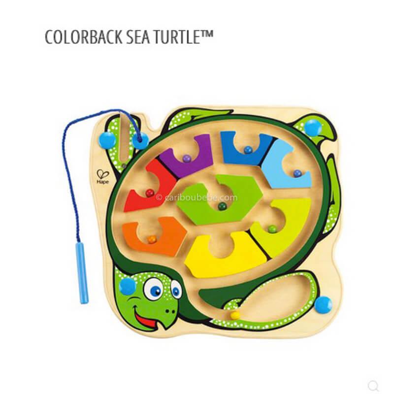 Color back Sea Turtle 24M Hape