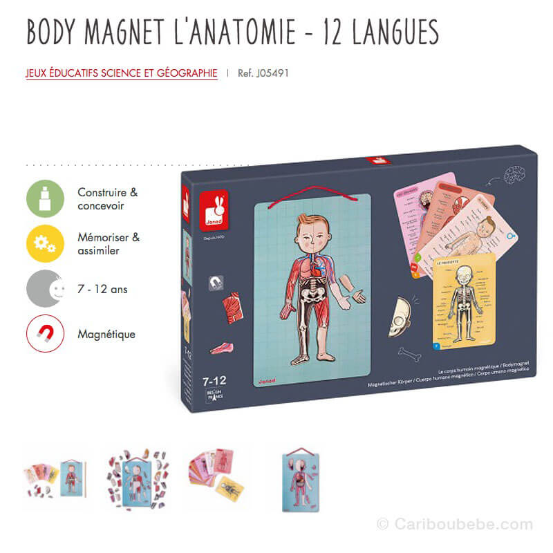 Body Magnet Anatomie 12 Langues 6-12A Janod